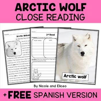 Arctic Wolf Close Reading Passage Activities