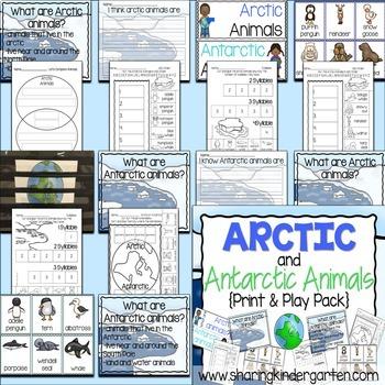 Arctic and Antarctic Animals