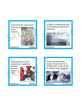 Arctic and Antarctic Unit Activity - Fun Fact Cards for Games, Bulletin Board