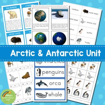 Arctic and Antarctic Mini Unit Activities