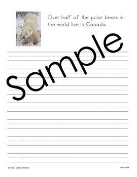 Arctic and Antarctic Unit - Copywork - Print and Cursive - Handwriting