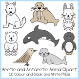 Arctic and Antarctic Animal Clipart