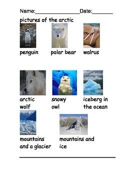 Arctic habitats reading comprehension