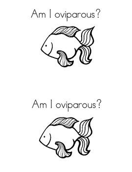 Are We Oviparous?
