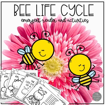 Are You a Bee? Book Companion and Bee Life Cycle