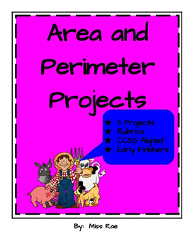 Area and Perimeter Math in Focus aligned Project
