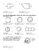Area of Circles & Compound Composite Shapes (Terms of Pi & Decimals) Worksheet
