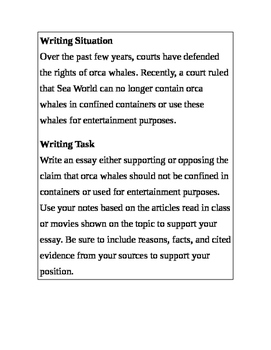 Argument Essay Based on Orka Whales and Animal Cruelity