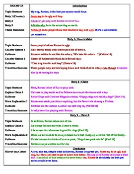 Argument Essay Guide ELL