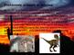 Arizona History PowerPoint - Part II