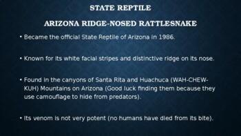Arizona State Symbols PowerPoint