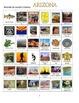 Arizona:  State Symbols and Sites