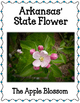 Arkansas Bulletin Board Set.  US State History