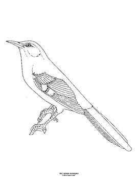Arkansas State Bird Notebooking Set Northern Mockingbird