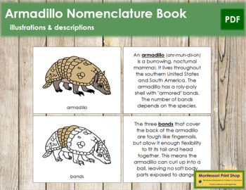 Armadillo Nomenclature Book