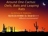 Around One Cactus PowerPoint Reading Street 3.3.5