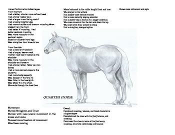 Around the Horse
