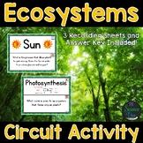 Ecosystems - Around the Room Circuit