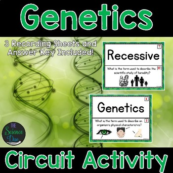 Genetics - Around the Room Circuit