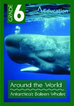 Around the World - Antarctica's Baleen Whales - Grade 6