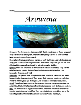 Arowana - Fish Review Article Lesson with questions vocab facts