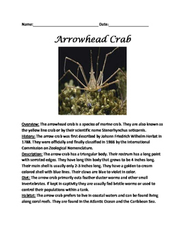 Arrowhead Crab - Informational article questions facts vocabulary
