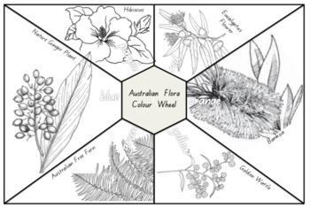 Art Australian Colour Wheel using Native Flora