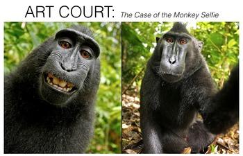 Art Court: The Case of the Monkey Selfie
