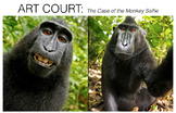 Art Court: The Case of the Monkey Selfie