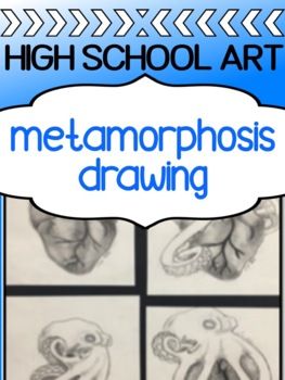 Art - Drawing Assignment for high school - Metamorphosis Drawing