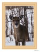 Art Inspiration: Animals In Winter