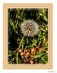 Art Inspiration: Flowers