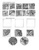 Art Lesson Printable Assignment: Zentangle Tile