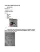 Art Lesson- Texture- Texture Pet (lesson 14) Grade 1