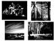 Art Lesson: Visualizing Contrast-(Chiaroscuro)