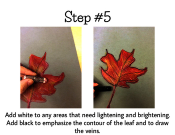 Art Lesson for Kids: Fall Leaves with Oil Pastels, A Warm & Cool Color Study