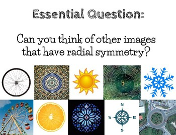 Art Lesson for Kids: Radial Symmetry Paper Relief Sculpture