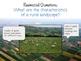 Art Lesson for Kids: Rural Landscape Collage