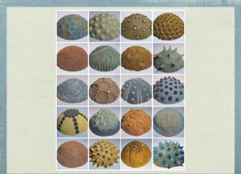 Art History; Pottery Pinch Pots Lesson - Maria Martinez