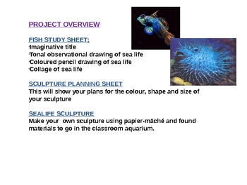 Art Sea Life Unit of work with lesson guides and worksheets