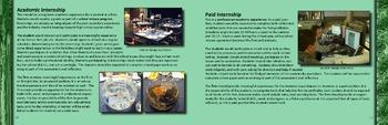 Art & Technology Education- Professional Experiences
