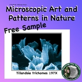 Art in Microscopic Nature Posters - Details, Patterns, and