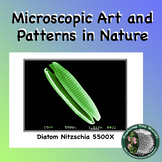 Art in Microscopic Nature Posters with Patterns, Designs,