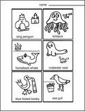 Antarctic Animals (Draw Write Color) 1 1 pg, Art Science, Art Lesson