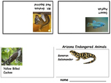 Arizona Endangered Species Mini Books (5 printables), Art Science