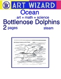 Bottlenose Dolphins - STEAM (2 pages), Art, Science, Math