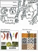 Art ... Animals: Feathers, Fur & Scales Mini Book (4 Printables) Science