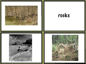 Goldsworthy Earth Elements Match Cards & 20 Art Task Cards (14 pages) Art Artist