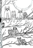 Coloring Book (6 pages) Zoo, Cars, Hearts,Owls, Flowers, Line Art