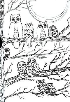 Coloring Book 6 Pages Zoo Cars Hearts Owls Flowers Line Art